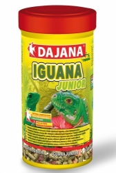 Dajana Iguana junior