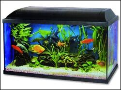 Akvárium CAT-GATO Pacific 100 x 30 x 40 cm