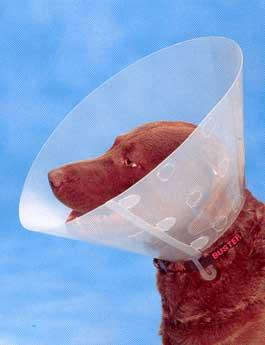 Límec ochranný BUSTER plastový Clic Collar 40cm