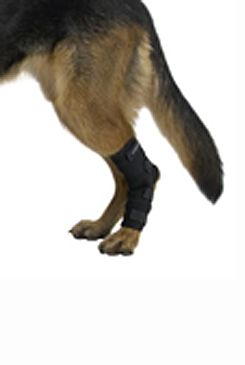Chránič hlezna pro psa KRUUSE Rehab XL