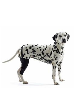 Bandáž na koleno pro psa KRUUSE Rehab S Pravá
