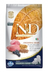 N&D LG DOG Puppy M/L Lamb & Blueberry 2,5kg